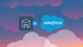 Mesa And Salesforce